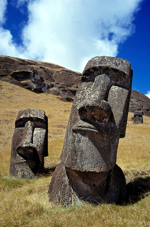 The strong-featured moai pose at Rano Raraku on Easter Island, a World Heritage Site.