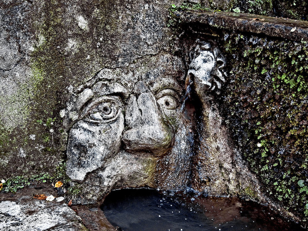 Detail of a stone troll carving in a canal in the gardens of the  Villa d'Este.  The creature's open mouth seems to be drinking in the water of the canal.