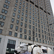 Aurora outside Shell's London HQ. The giant polar bear puppet Aurora made by Greenpeace walked the streets of London in defence of the Arctic as part of a Greenpeace global day of action. The parade,part performance part protest, was to highlight the melting ice caps and the increasing and potentially devastating oil drilling in the arctic sea. Shell is one of the companies drilling and the march through London ended up outside Shell London HQ to draw attention to their oil business in the arctic. Aurora, the biggets polar bear in the world represents all endangered species in arctic.