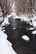 Snow Creek, Inyo National Forest, California USA