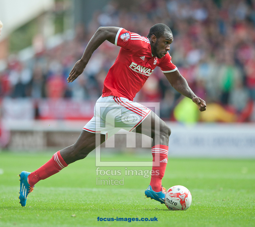 Michail Antonio of Nottingham Forest moves forward during the Sky Bet Championship match at the City Ground, Nottingham<br /> Picture by Russell Hart/Focus Images Ltd 07791 688 420<br /> 14/09/2014