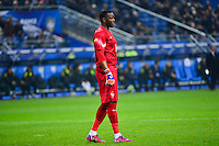 Steve MANDANDA - 26.03.2015 - France / Bresil - Match Amical<br />