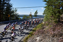 The bunch head toward Halden during Ladies Tour of Norway 2019 - Stage 4, a 154 km road race from Svinesund to Halden, Norway on August 25, 2019. Photo by Sean Robinson/velofocus.com