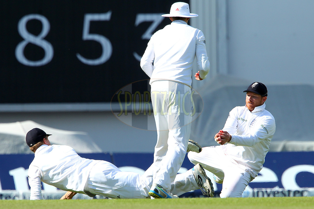 Ian Bell of England takes the catch to dismiss Ravichandran Ashwin of India during day three of the fifth Investec Test Match between England and India held at The Kia Oval cricket ground in London, England on the 17th August 2014<br /> <br /> Photo by Ron Gaunt / SPORTZPICS/ BCCI