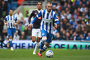 Brighton striker Jiri Skalak during the Sky Bet Championship match between Brighton and Hove Albion and Derby County at the American Express Community Stadium, Brighton and Hove, England on 2 May 2016. Photo by Bennett Dean.
