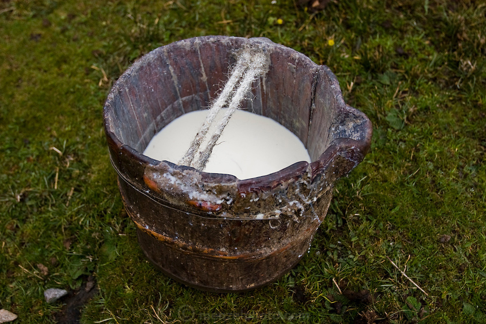A bucket of yak milk outside nomadic yak herder Karsal's home in the Tibetan Plateau.  (Karsal is featured in the book What I Eat: Around the World in 80 Diets.)
