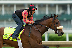 Derby 142 hopeful Suddenbreakingnews with Ramiro Gorostieta up were on the track for training, Wednesday, May 04, 2016 at Churchill Downs in Louisville.