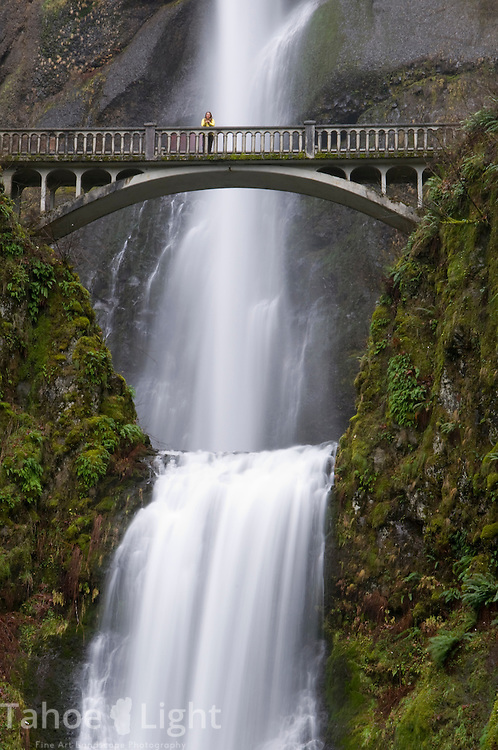 Multnoma falls in Oregon
