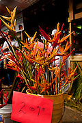Bird of Paradise flowers on sale at a produce market in Maricao Puerto Rico