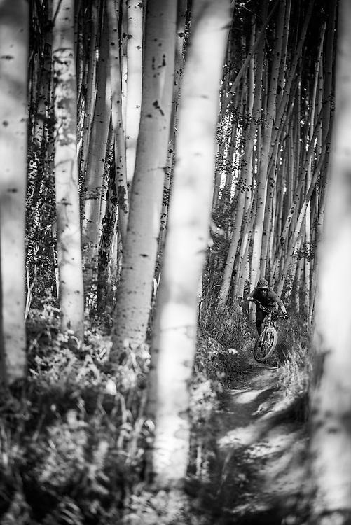 Eliot Rosenberg - Crested Butte, CO
