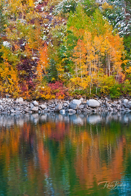 Fall color and fresh snow at Lake Sabrina, Inyo National Forest, Sierra Nevada Mountains, California
