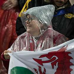 British &amp; Irish Lions Fan during game 9 of the British and Irish Lions 2017 Tour of New Zealand, the second Test match between  The All Blacks and British and Irish Lions, Westpac Stadium, Wellington, Saturday 1st July 2017<br /> (Photo by Kevin Booth Steve Haag Sports)<br /> <br /> Images for social media must have consent from Steve Haag