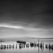 Timber Ponds were set up along the southern shore of the River Clyde in the early days of wooden shipbuilding, occupying the area between Port Glasgow and Langbank. The industry required vast quantities of thoroughly seasoned timber, and with shipyards occupying most of the shore line from central Greenock to eastern Port Glasgow, demand was prodigious.<br /> The ponds prevented the timber from floating away and allowed the logs to be organised according to type, length of seasoning, and ownership. Extreme weather could result in the logs breaking free of the ponds, closing the river until they were recovered. Remnants of the timber ponds still exist in the lines of vertical wooden posts sticking out of the mud, and rectangular areas can still be seen in aerial views of the surrounding riverbed.<br /> Imported from North America, timber crossed the Atlantic from Quebec to Port Glasgow. In 1825 this trade amounted to some 19,000 tons, and reached almost 28,000 tons by 1834. The timber was unloaded at the mid-harbour, then chained together with rafters and floated to the ponds. At their peak, the ponds extended as far as the Gare Loch, but the arrival of precut timber and steel construction by 1914 meant that few remained in use.<br /> Current practice is to place green, unseasoned timber in vast kilns, gradually reducing the moisture content until the sawn material is stable. This technology was not available in earlier years, when ancient practice was to leave the unsawn logs to lie on the tidal mudflats and season, for months or even years.  (secret scotland wiki)