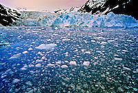 Blackstone Glacier, Prince William Sound near Whittier, Alaska USA