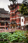 Buildings around the Huxinting Teahouse in Yu Yuan Gardens Shanghai, China