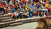 Ara bleu. Blue-and-yellow macaw (Ara ararauna).<br /> Considere comme l'un des plus importants parcs ornithologiques en Europe, le Parc des Oiseaux presente une collection d'oiseaux exceptionnelle de plus de 3000 individus, representant pres de 300 especes originaires de tous les continents.<br /> Exclusivites: Le spectacle d'oiseaux en vol, tous les jours, est un veritable festival de couleur