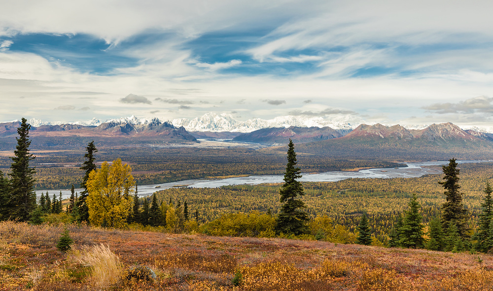 Autumn scenic of Mt Foraker and the Alaska Range from Curry Ridge in Denali State Park in Southcentral Alaska. Afternoon.