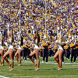 Oct 2, 2010; Baton Rouge, LA, USA; The LSU Tiger Band and Golden Girls perform on the field prior to kickoff of a game between the LSU Tigers and the Tennessee Volunteers at Tiger Stadium.  Mandatory Credit: Derick E. Hingle
