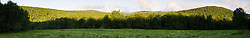 A field in the Green Mountains.  Eden, Vermont.