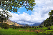 Loweswater, Lake District, Cumbria, England, UK