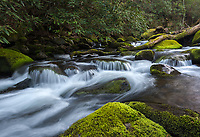 Small cascades along Roaring Fork Motor Nature Trail in Great Smoky Mountains National Park, TN.