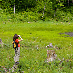 Birdwatching in the Green Mountains. Eden, Vermont.