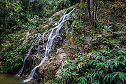 A waterfall in the Amazonian rainforest. Photographed near Minca, Colombia