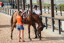 Houtzager Marc, NED, Sterrehofs Calimero<br /> World Equestrian Games - Tryon 2018<br /> © Hippo Foto - Sharon Vandeput<br /> 23/09/2018