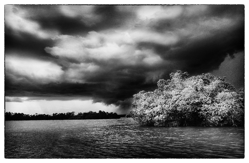 Summmer Storm Clouds moving over the mangroves.
