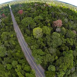 """""""Floresta (paisagem) fotografado em Linhares, Espírito Santo -  Sudeste do Brasil. Bioma Mata Atlântica. Registro feito em 2013.<br /> <br /> <br /> <br /> ENGLISH: Forest Landscape photographed in Linhares, Espírito Santo - Southeast of Brazil. Atlantic Forest Biome. Picture made in 2013."""""""