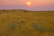 Rolling hills and coulees of mixed-grass native prairie at sunset<br />Grasslands National Park<br />Saskatchewan<br />Canada