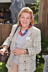 Ros Packer at the RHS Chelsea Flower Show Press Day, Royal Hospital Chelsea, London England. 22 May 2017.<br /> Photo by Dominic O'Neill/SilverHub 0203 174 1069 sales@silverhubmedia.com