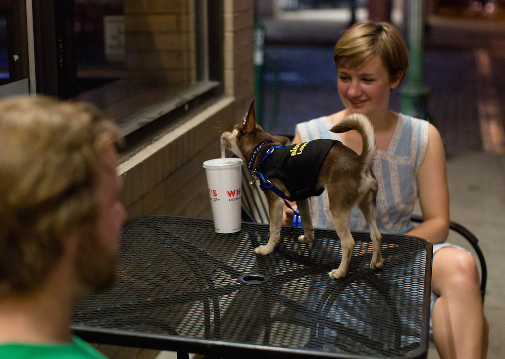 Erin Grimes' dog takes a lick of her drink outside of Whit's in Athens on Aug. 30, 2014. Photo by Lauren Pond
