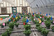 OSU Greenhouse