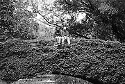 A couple sitting on one of the many Bridges in Central Park in New York City.