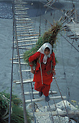 Traditional dressed women coming back from the harvest and walk over a gigantic suspension bridge in the karakorum mountains, near Passu on the Karakorum Highway, Northern Pakistan, asia