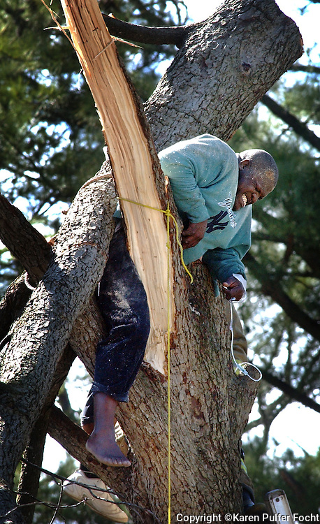 14 Mar 05 (kptree1) by Karen Pulfer Focht: Harold White waits to be rescued while trapped in a tree that fell on him as he cut it on Monday afternoon. Rescue workers worked to free him with a cherry picker. They eventually called for a crane, which lifted a heavy branch from his back, loosening the grip the tree had on him. He was pulled into the cherry picker and lowered and taken away in an ambulance. White was hired to cut the tree at 874 Greendale in Frayser. It is work he does on the side.