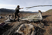 Reindeer men in the tundra. The Kamchatka Peninsula, Russia