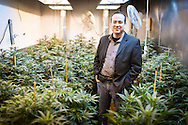 December 7, 2012. Seattle, Washington. Washington and Colorado became the first states to vote to decriminalize and regulate the possession of an ounce or less of marijuana by adults over 21. Pictured is John Davis who owns Northwest Patient Resource Center, which is a medical marijuana facility in Seattle..Photo © John Chapple / www.JohnChapple.com