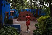 Frida's Mexico