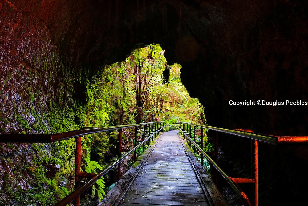 Thurston Lava Tube, Hawaii Volcanoes National Park, Island of Hawaii