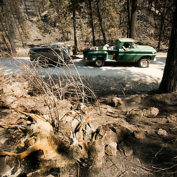 A deer which perished in the Elk Complex fire sits on a hillside as Fall Creek resident Robert Bulgin (green car at top) drives by with burned remnants of his residence which was destroyed in the Elk Complex fire. Wednesday August 28, 2013