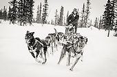 The Wolf's Den Kennel, Alaska