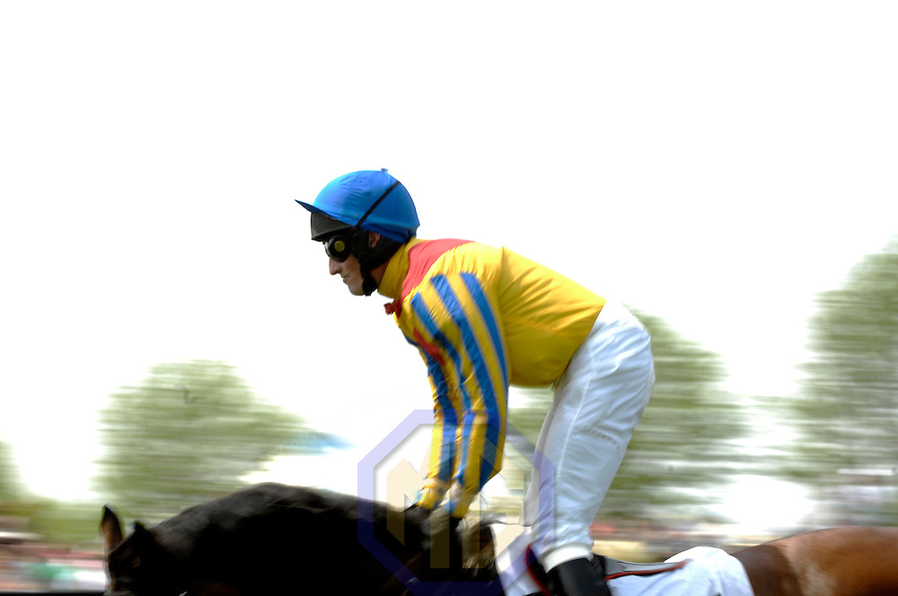 03 May 2008:  Robert Wash aboard Sweep Domino rides in the 3rd race in the 83rd running of the Virginia Gold Cup Races on October 20, 2007 at the Great Meadow in The Plains, Va..