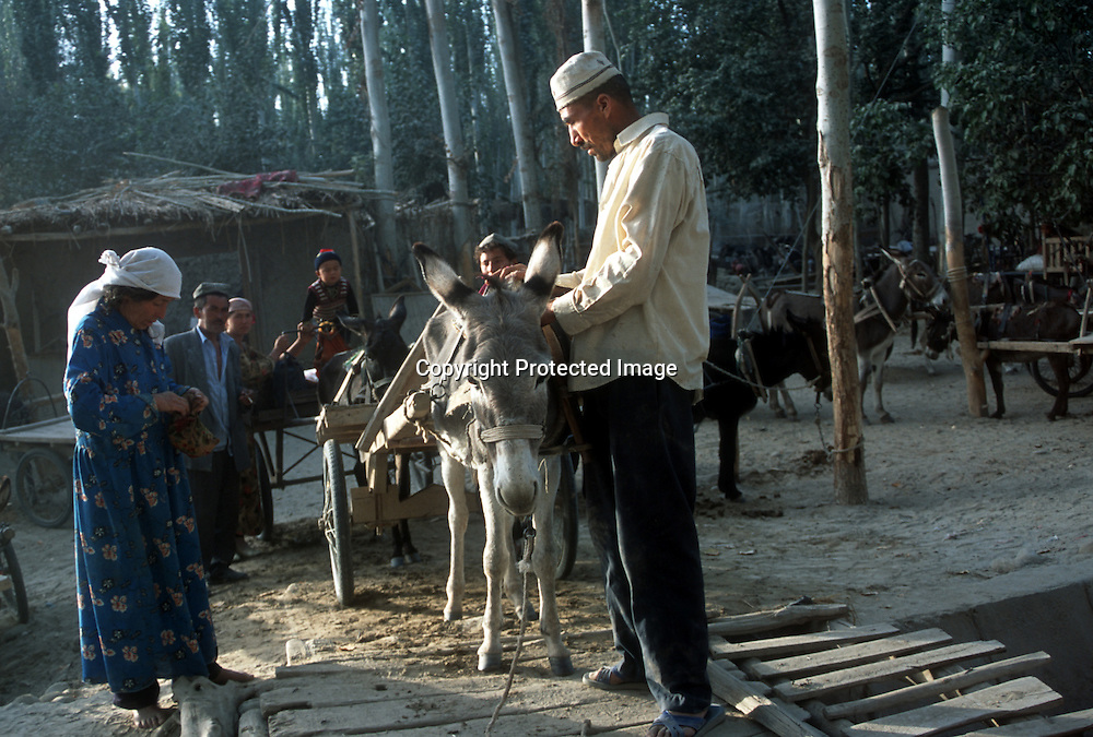 OASIS TOWN ALONG TAKLAMAKHAN DESERT,10/1/2001: a Uighur family prepares their donkey to go to the street in an oasis town in southern xinjiang province,china.The living standards in the south of Xinjiang are very basic,the average income is about 50 us/month..