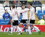 Cardiff City v Fulham 080117