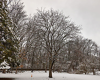 April Snow -- Winter is not gone. Image taken with a Leica CL camera and 18 mm f/2.8 lens (ISO 100, 18 mm, f/4, 1/400 sec). 5