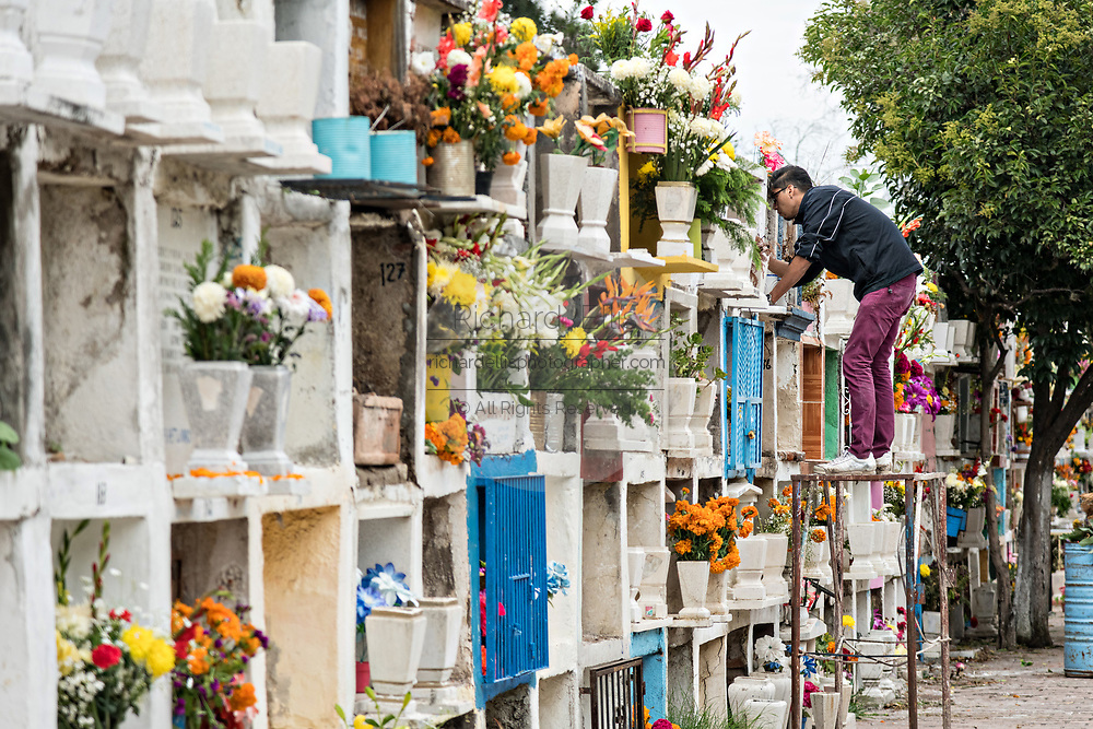 A Mexican man decorates the cremation niche at the Our Lady of Guadalupe cemetery during the Dead of the Dead or Dia de Muertos festival in San Miguel de Allende, Mexico. The multi-day festival is to remember friends and family members who have died using calaveras, aztec marigolds, alfeniques, papel picado and the favorite foods and beverages of the departed.