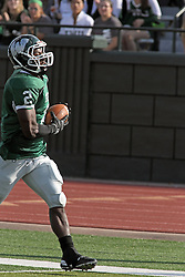 12 October 2013:  Devonte Jones strides up field crossing the goal line on a 61 yard run during an NCAA division 3 football game between the North Park vikings and the Illinois Wesleyan Titans in Tucci Stadium on Wilder Field, Bloomington IL