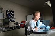 ARC, diabetes research, Dominic Maschari, Medicine, Student, Undergraduate, voices of OHIO